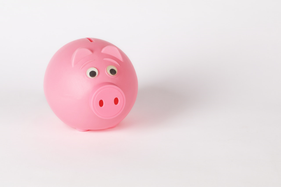 pink piggy bank with white background.